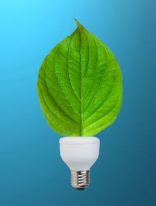 consumi e sostenibilità
