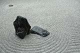 Gli elementi principali di un giardino secco o karesanshui: rocce e ghiaia rastrellata secondo precisi tracciati geometrici.