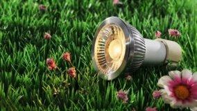 Mettere le luci in giardino