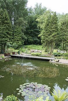 Un tipico giardino all'inglese.