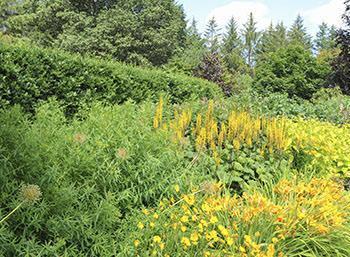 Le aiuole di fiori nel giardino all'inglese rivestono un ruolo molto importante.