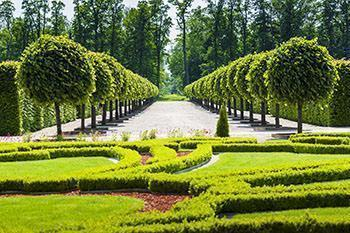 Giardino alla francese giardino alla francese - Giardino francese ...