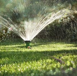 irrigare con acqua salata