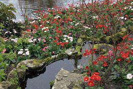 Arredare il giardino con le pietre for Laghetti nei giardini