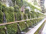 Le Cento Fontane del giardino della Villa d'Este a Tivoli.
