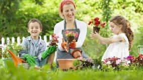 Giardini a bassa manutenzione