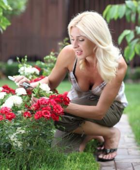tempo giardino bassa manutenzione