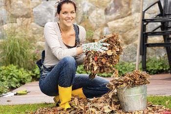 lavori in giardino di novembre