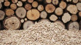 Incentivi per caldaie e stufe a biomassa in Veneto