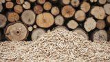 Veneto: Incentivi per caldaie e stufe a biomassa