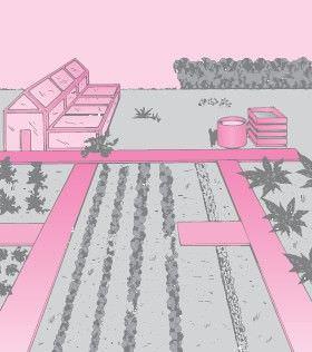 Progettare l'orto