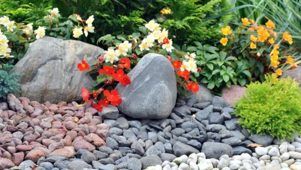 Giardino roccioso - Costruire giardino roccioso ...