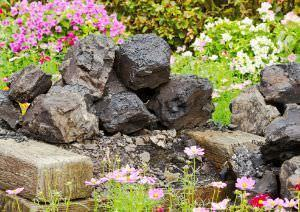 Giardino roccioso - Creare giardino roccioso ...
