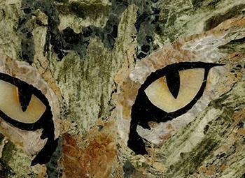 Particolare della raffigurazione di un gatto.