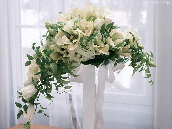 Arredare con i fiori - Piante da tenere in camera da letto ...