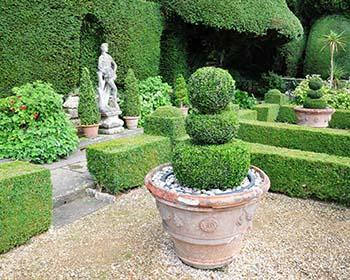 Scorcio di un giardino all'italiana.