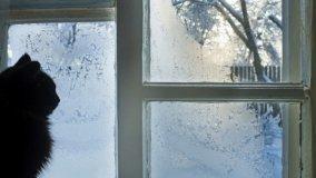 Eliminare il ghiaccio dalle finestre