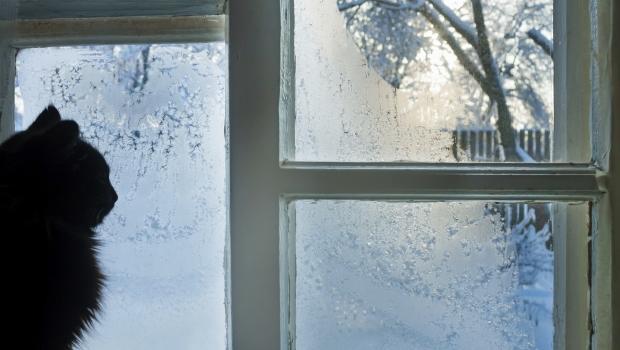 Eliminare il ghiaccio dalle finestre - Eliminare condensa dalle finestre ...