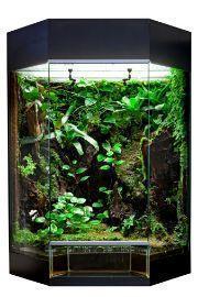 giardino in vetro
