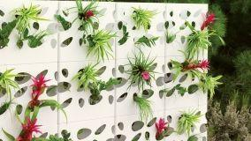Muri e divisori con fiori