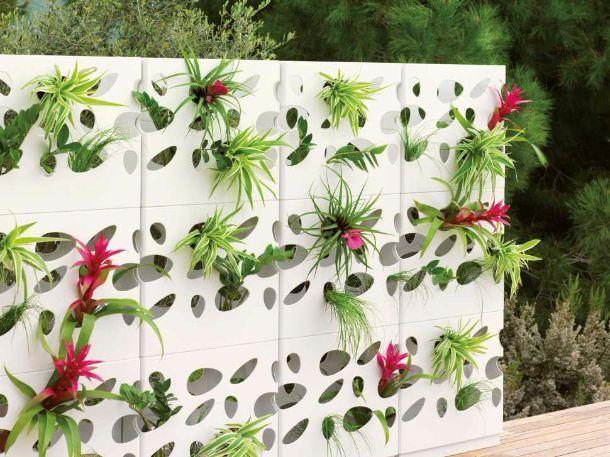 Muri e divisori fioriti
