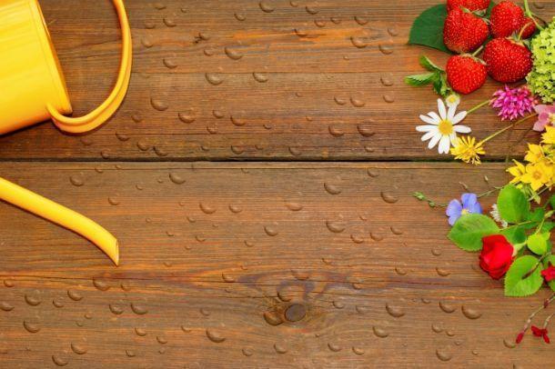frutta in terrazzo