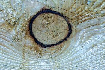 Difetti del legno nodi