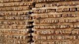 Conservazione del legno