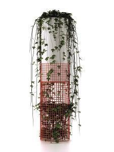 Anteprime Euroluce 2015: Serralunga, Net Light Vase