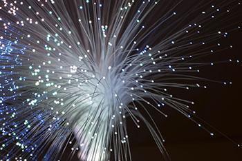 Un fascio di fibre ottiche.