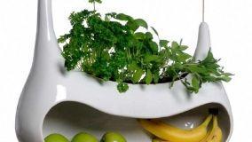Contenitori indoor per piante aromatiche