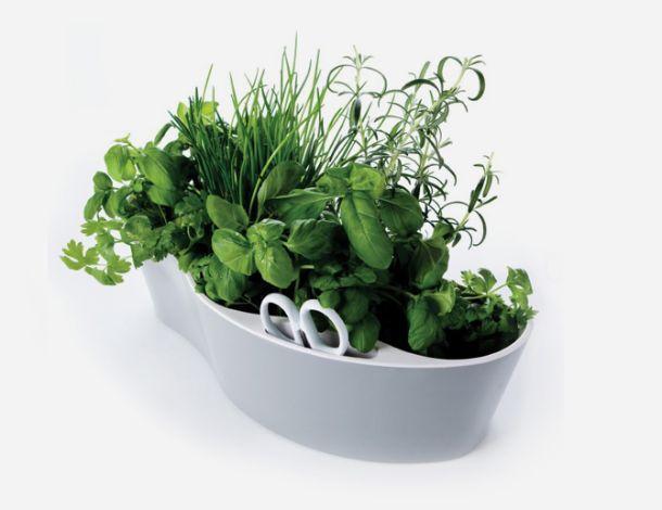 contenitore per erbe aromatiche herb garden di Royal KVB