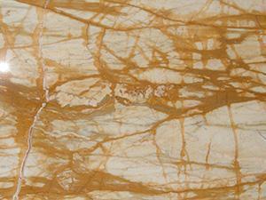 Il cosiddetto Marmo Giallo di Siena (in realtà una roccia calcarea).