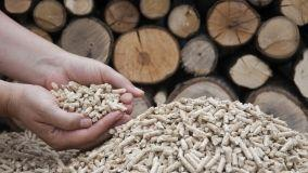 Guida alla detrazione sul risparmio energetico per generatori a biomassa