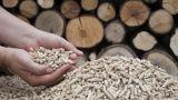 Caldaia a biomasse e detrazione 65%