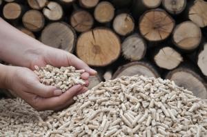 detrazione 65% biomasse