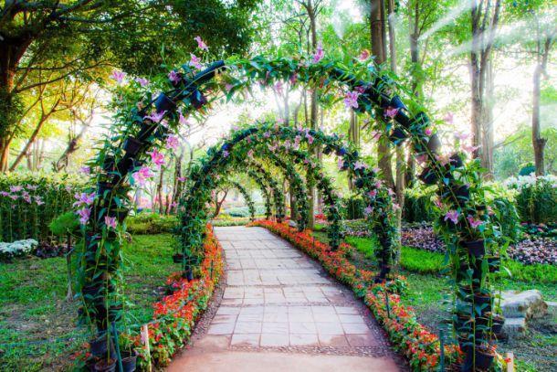 Arco per rampicanti for Giardino fiorito