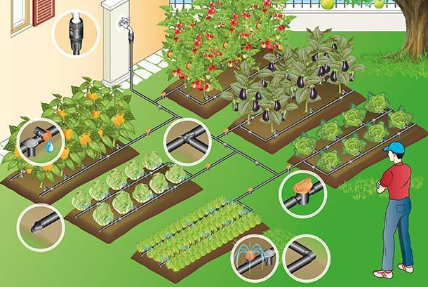 Impianto di irrigazione a goccia fai da te for Sistema irrigazione a goccia