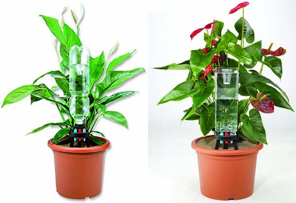 Impianto di irrigazione a goccia fai da te for Materiale irrigazione