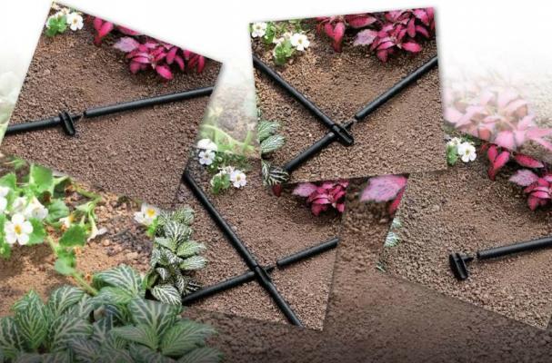 Impianto d'irrigazione a goccia