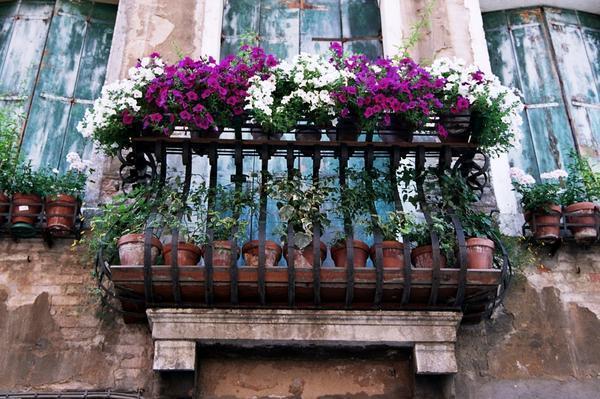 terrazzino fiorito