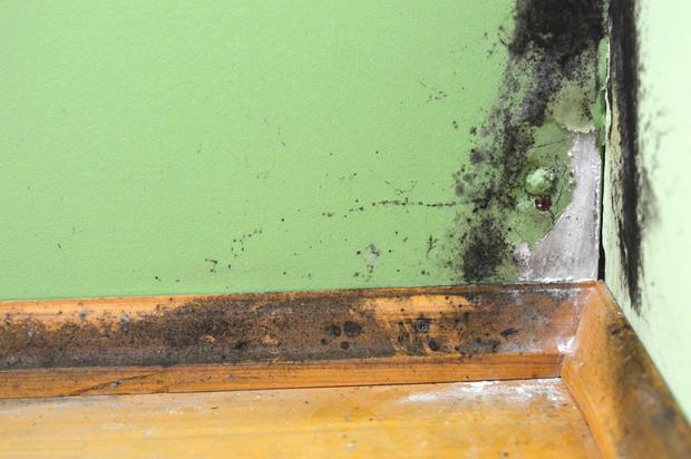 Umidità muri: danni da umidità ascendente