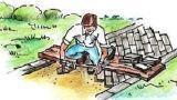 Vialetto con mattoni in giardino: come si realizza
