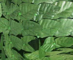 Siepe edera artificiale Amazon.it