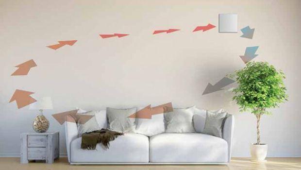 Un metodo semplice ed efficace per eliminare la muffa in casa