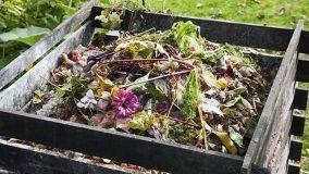 TARI: riduzione per chi fa il compost