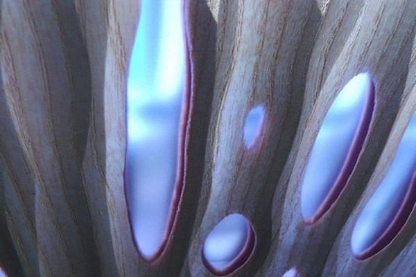 Pannello Vibrato di Lamellux zaffiro
