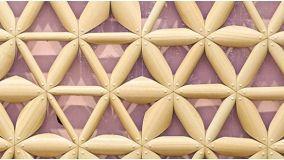Materiale biomimetico per superfici che reagiscono alla pioggia
