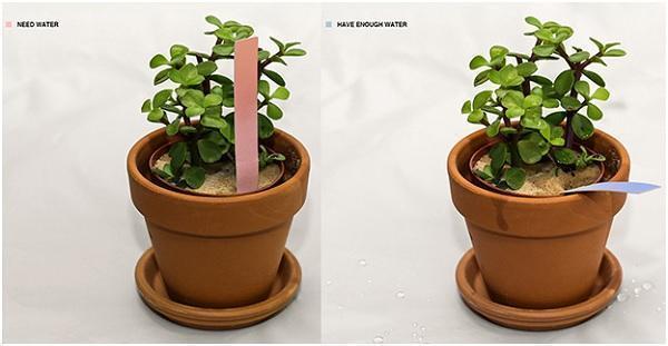 Indicatori per il giardinaggio con il materiale biomimetico  di Chao Chen