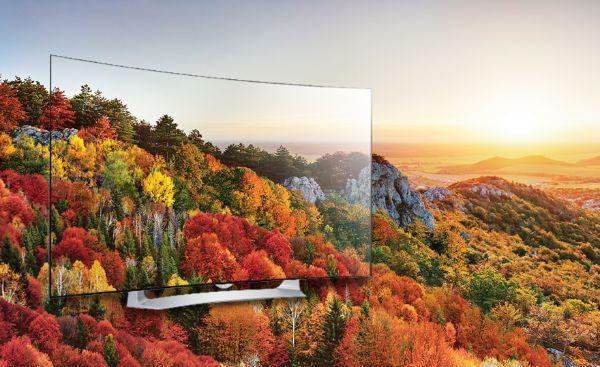 Schermo Tv OLED di LG